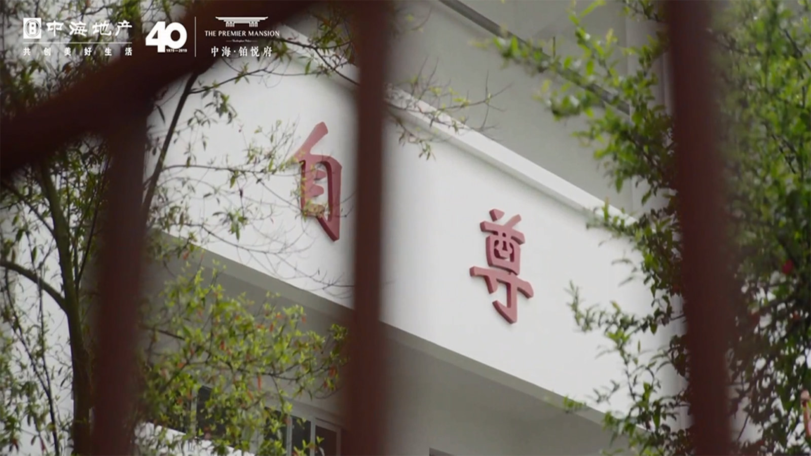 中海公益视频
